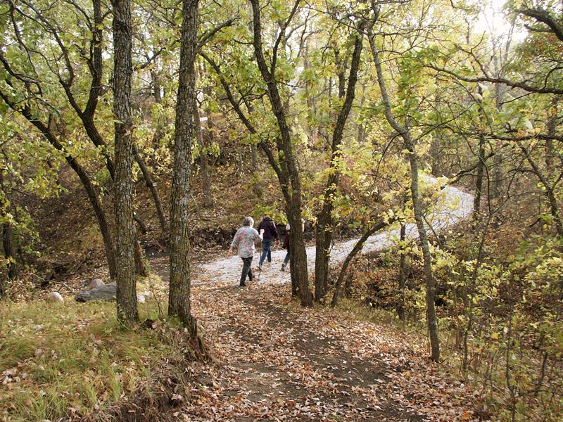 ARPC-trail-walk